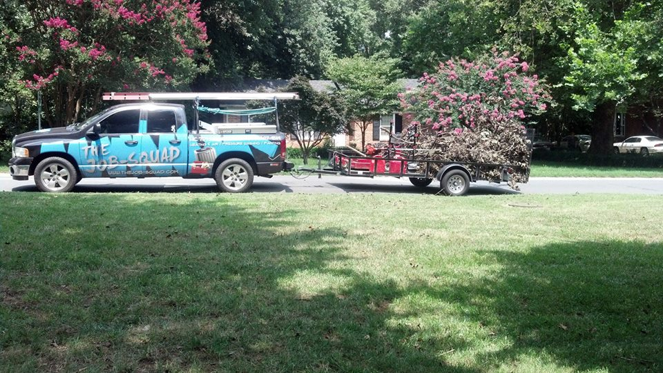 Yard Debris Removal and Cleanup Charlotte, NC