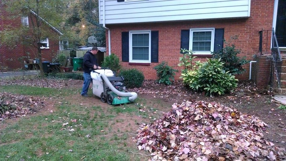 Leaf Removal Pineville NC